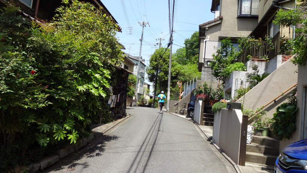 京都トレイル東山ルート