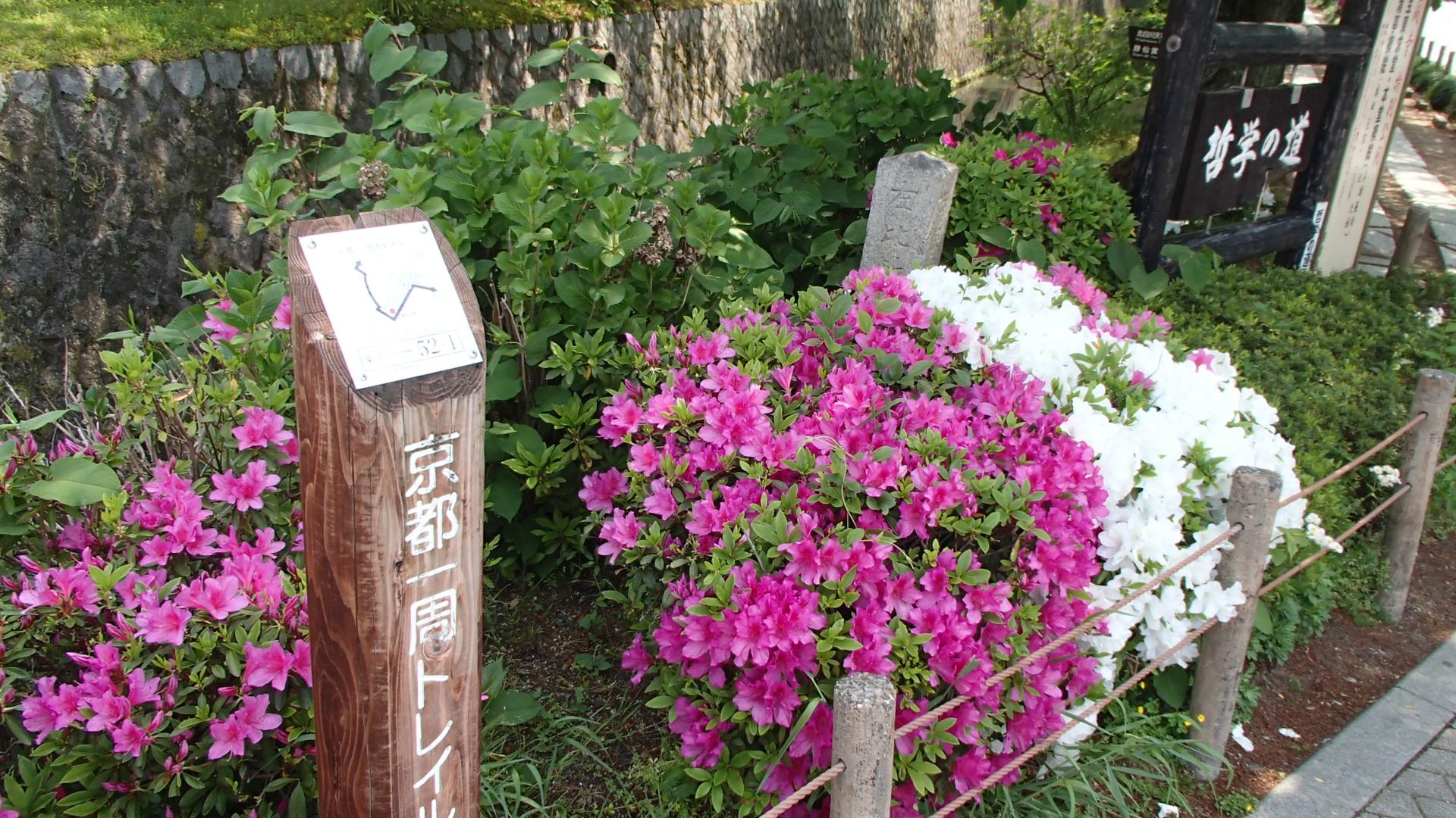 京都トレイル52-1銀閣寺交差点