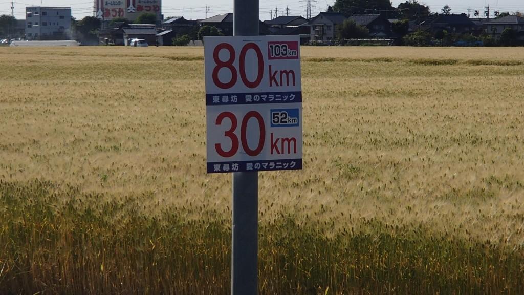 80km地点16:16通過