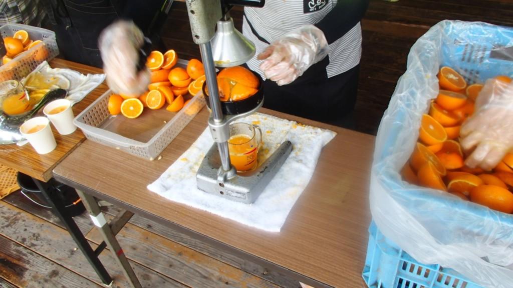 因島・アメニティ交流館エード生絞りオレンジ