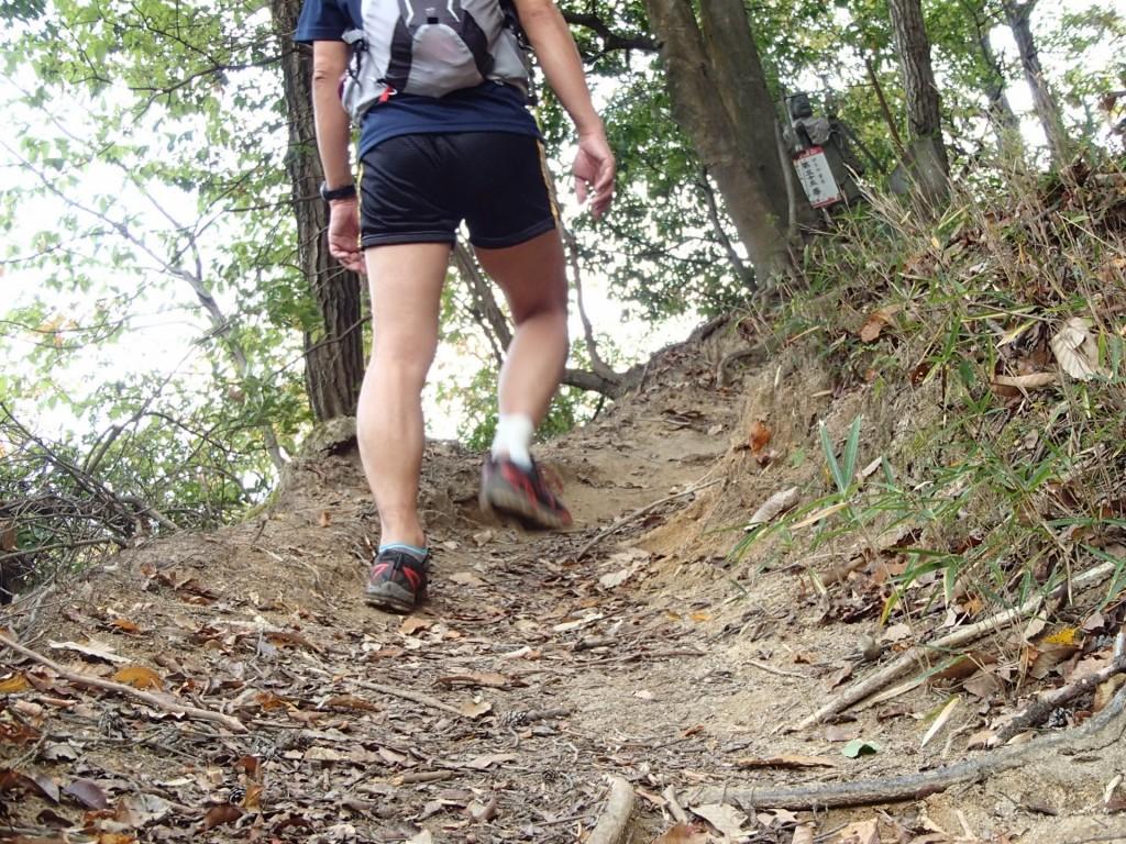 瓜生山方面への登り坂