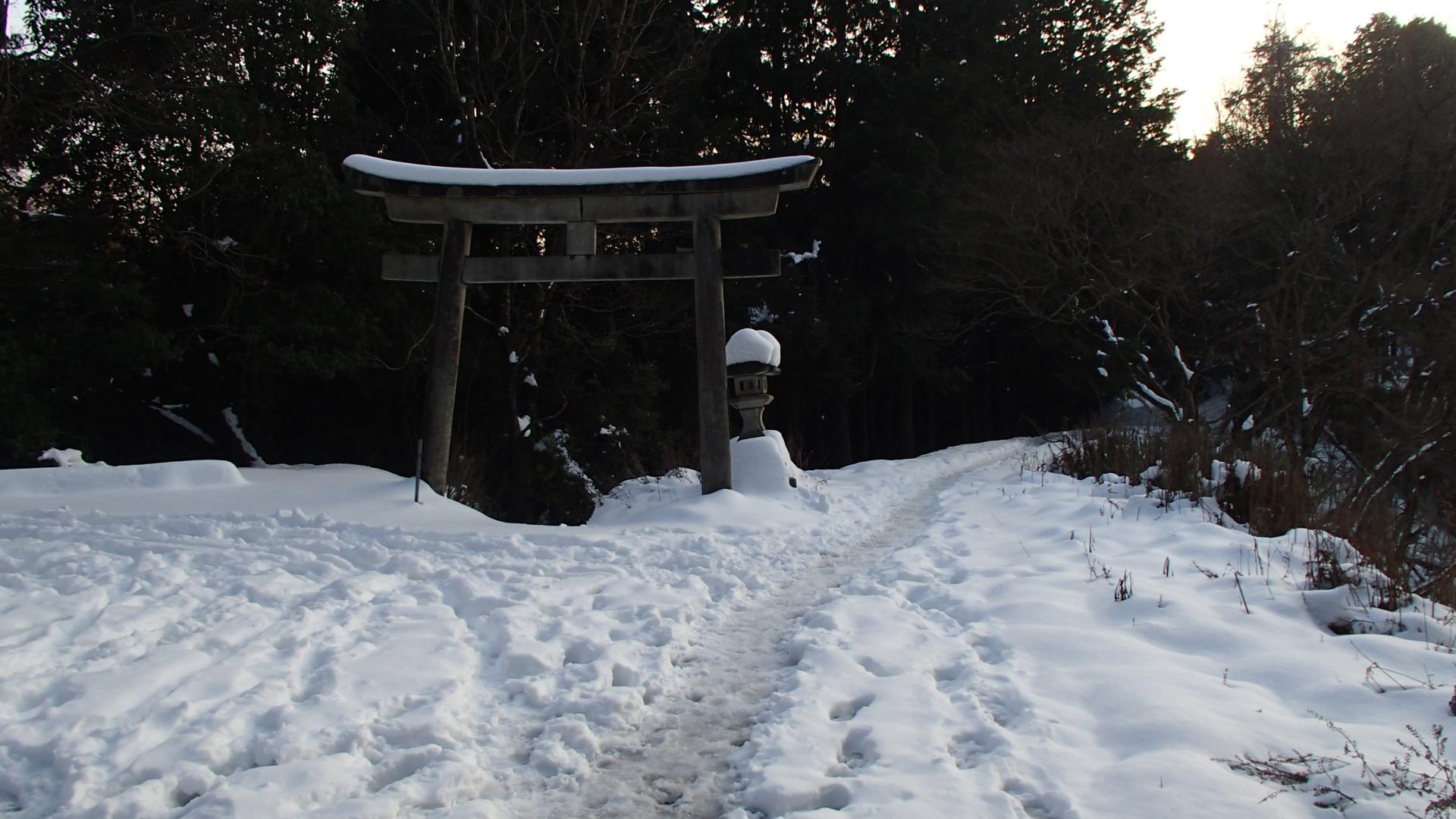 京都トレイル 東山67標識付近