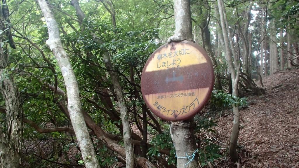 天ヶ岳分岐標識