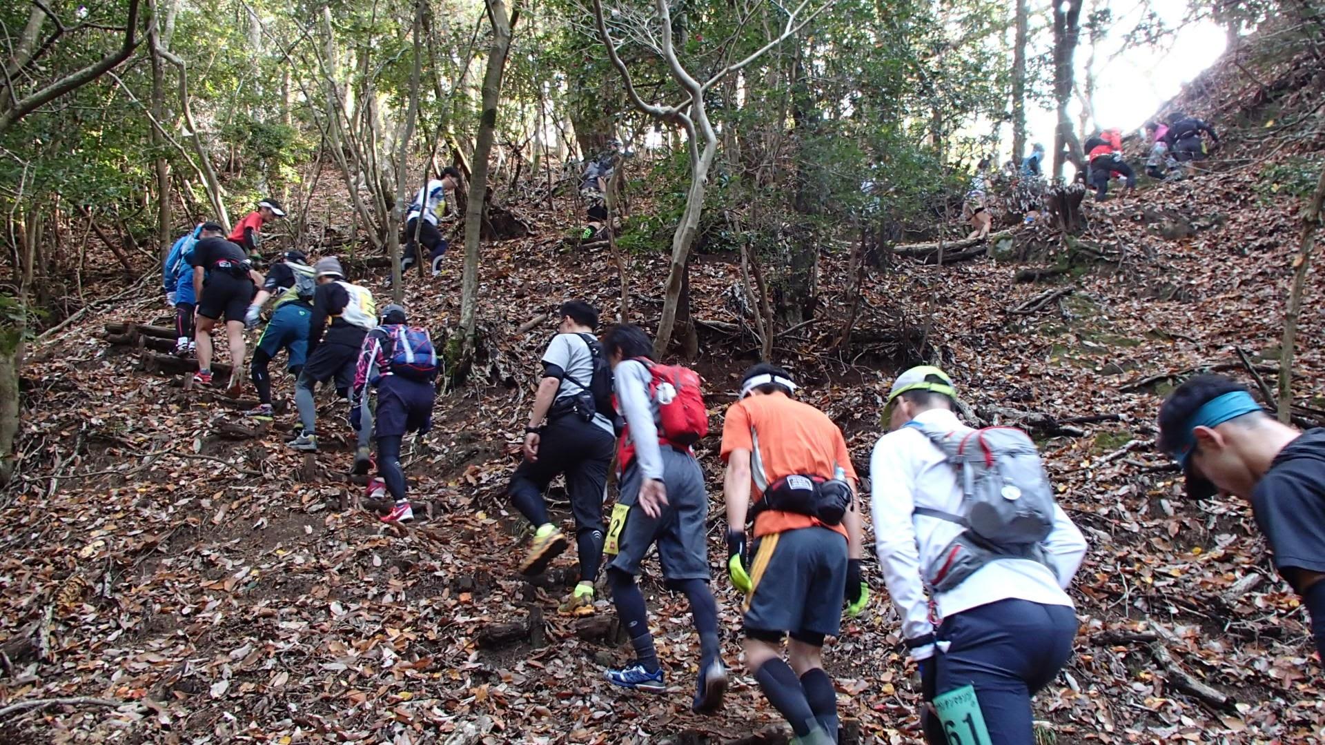比叡山比叡山東山三十六峰マウンテンマラソン