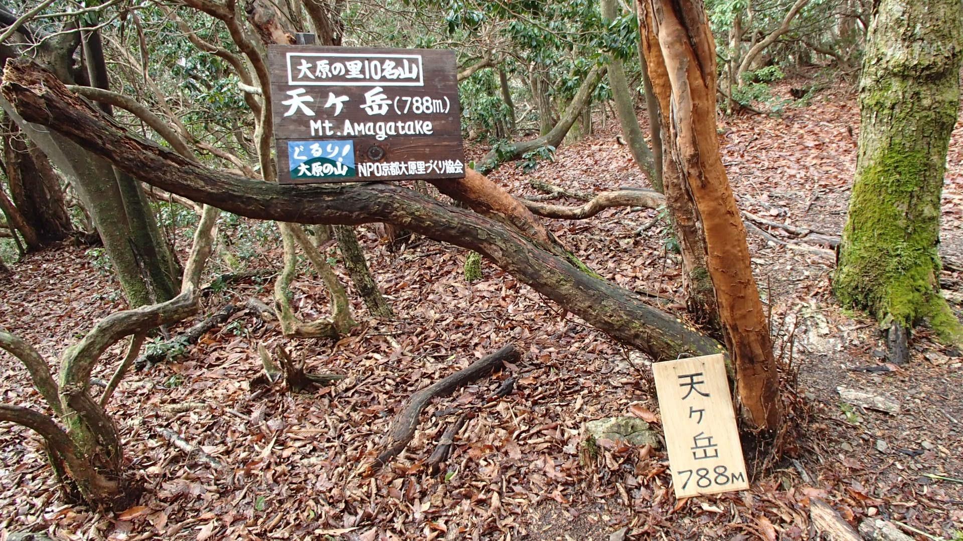 天ヶ岳(大原10名山)788m