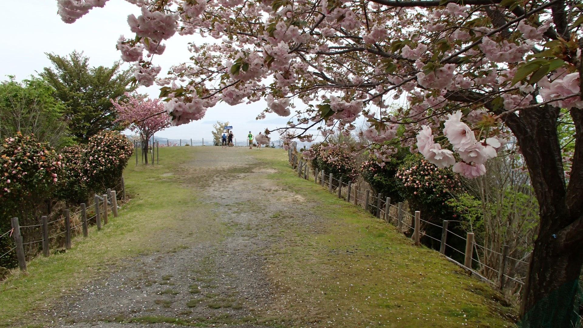 琵琶湖展望台