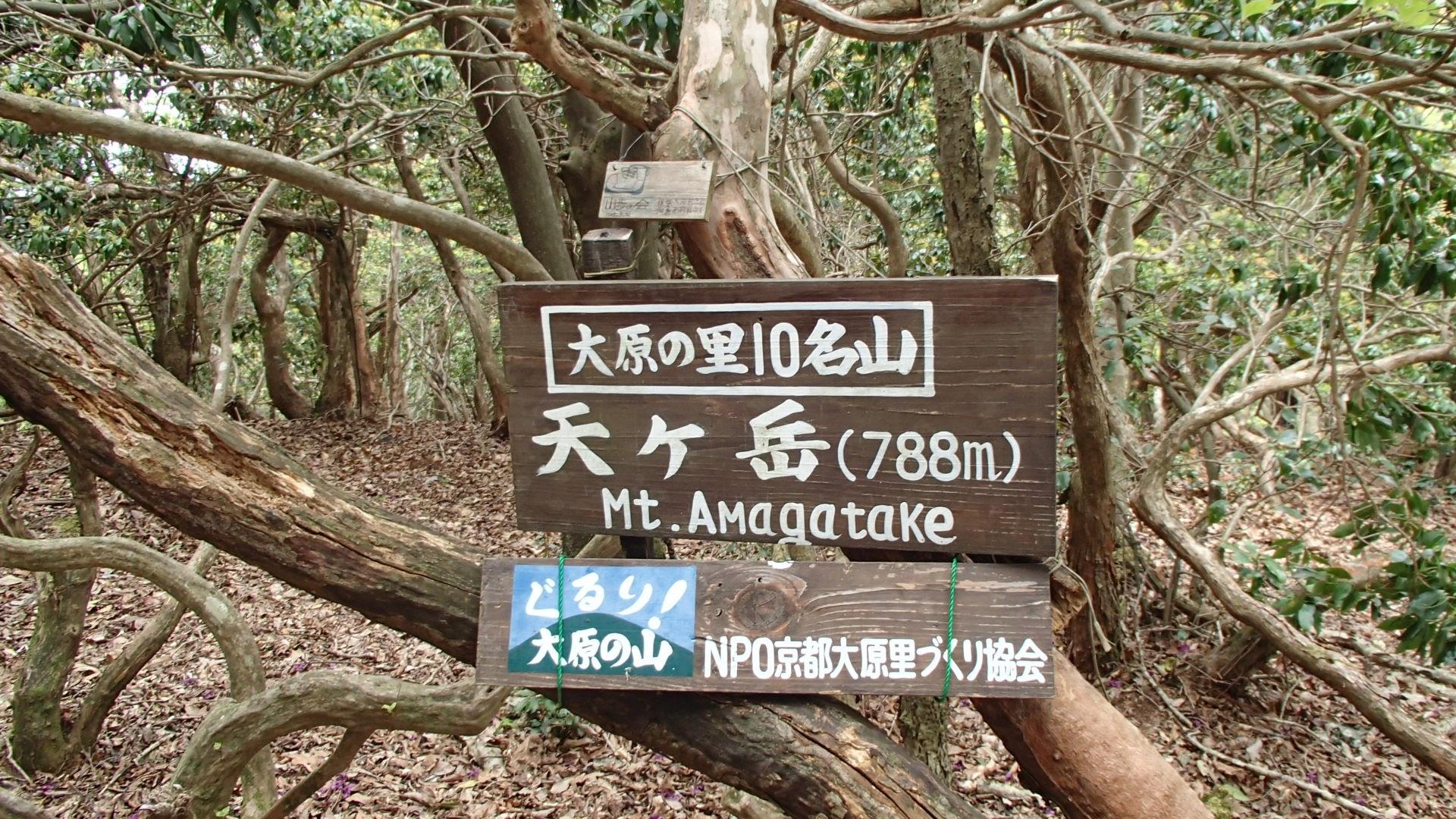 天ヶ岳788m
