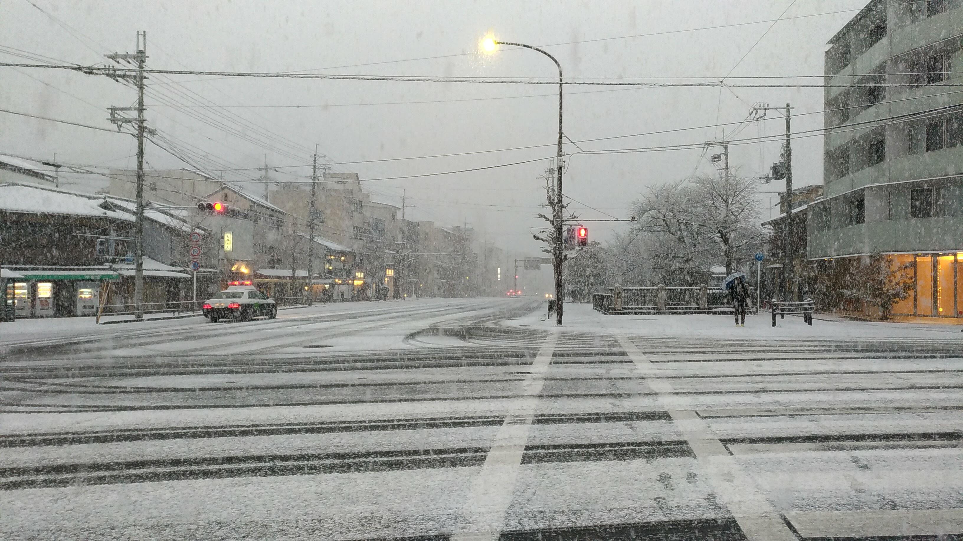 銀閣寺では吹雪いてました